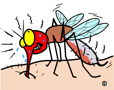 mosquito burning its mouth on hot meal