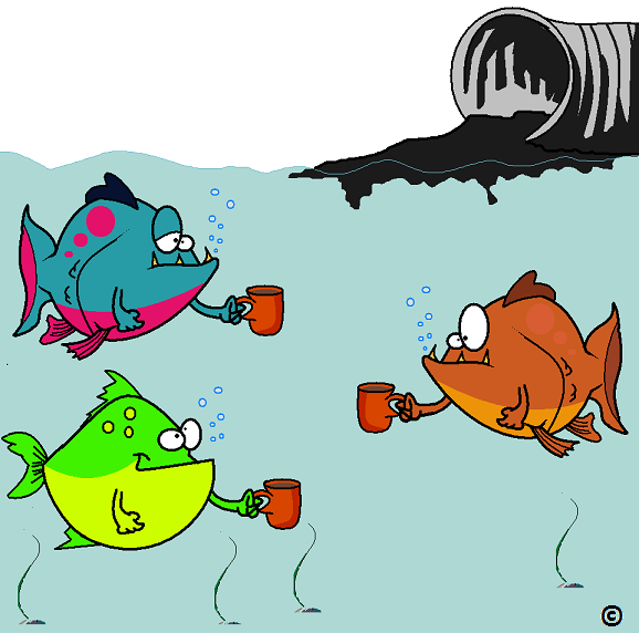fish at the caffeine watering hole