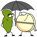 anti-acid protecting a bacteria from the acid rain