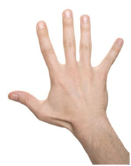 Photo of a hand