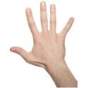 alpha male hand