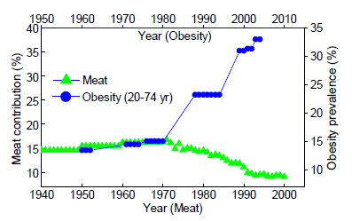 fat obesity connection