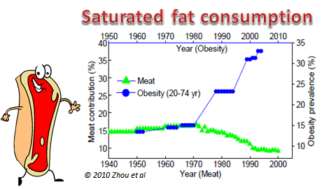 meat consumption across time in the USA