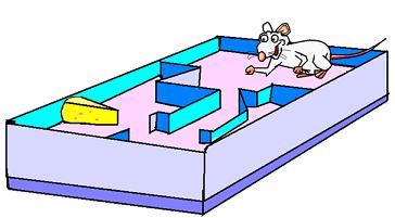 Rat running a maze