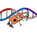 genetics v dinner plate