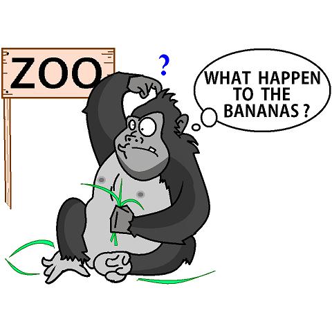 Gorilla on a diet