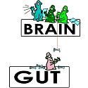 gut bacteria controlling brain