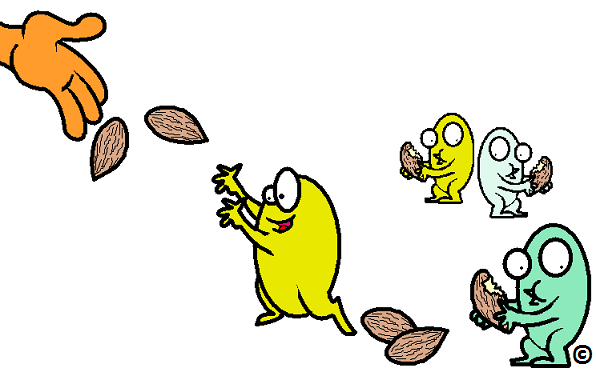 gut bacteria being fed almonds