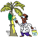 painting banana trees yellow
