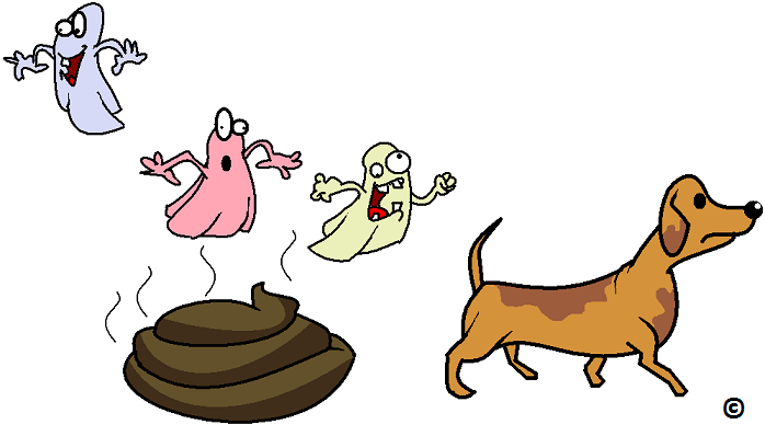 bacteria wafting off dog pooh