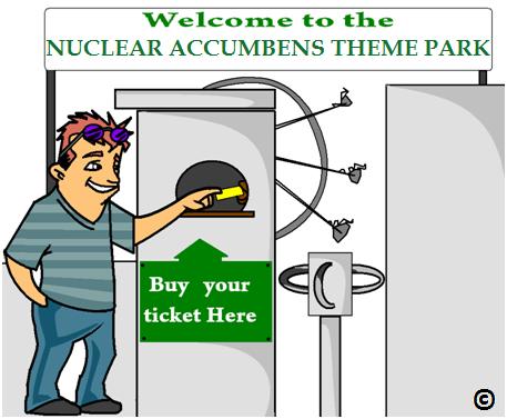 nuclear accumbens fun fair