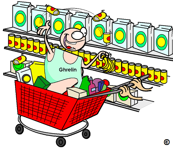 ghrelin on a shopping spree