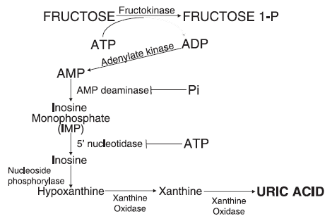 fructose chemistry
