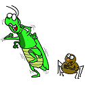 grasshopeer who is afraid of a spider