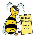 bee begging