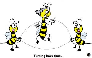old bee turning back time (A bee fix for an aging brain)