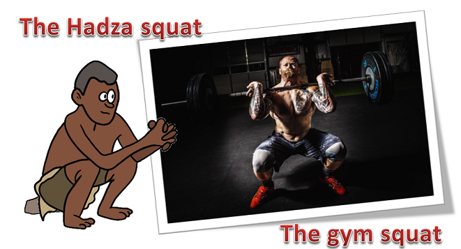 comparison between hadza squat and gym squat