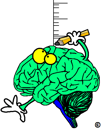 brain size the problem in ADHD