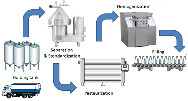 simplified drawing of the processing of milk