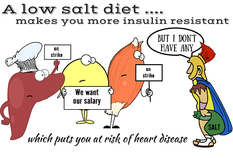 a shortage of salt causing insulin resistance