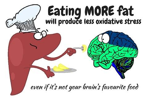 liver feeding brain fat