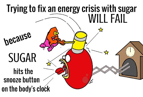 sugar hitting the orexin alarm clock