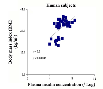 fat mass versus insulin levels