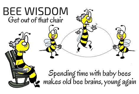 bee aging fi