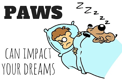dog keeping man awake