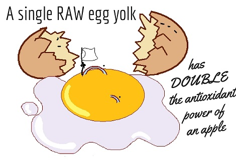 antioxidant in egg yolk