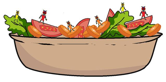 salad with carotenoids