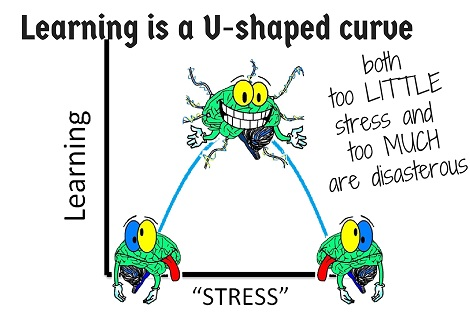 stress and the learning curve