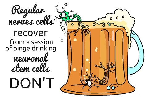 stem cell less drinking
