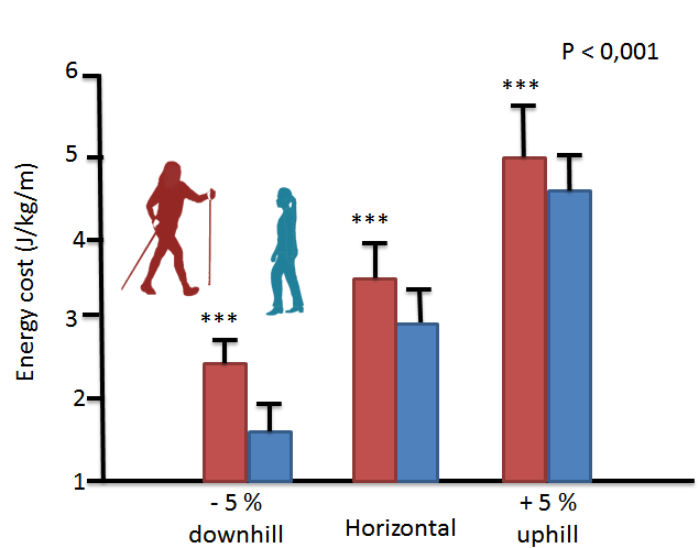 graph showing energy expenditure when nordic walking