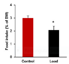 food intake in mice with capsule