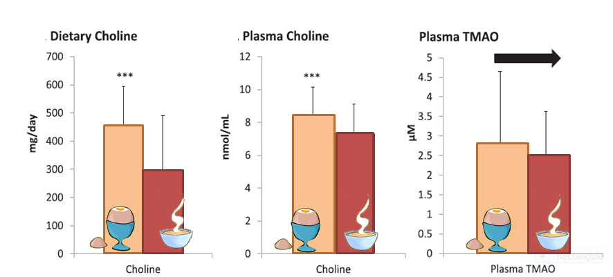 Bar graph of choline and TMAO levels