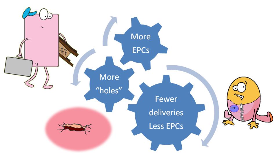 The EPC viscious cycle