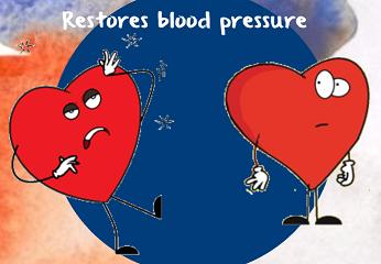 aldosterone restores blood pressure