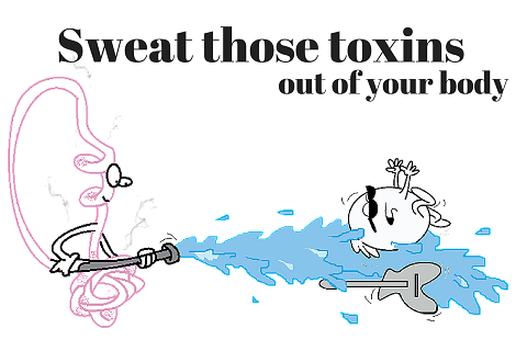 sweat gland removing toxins