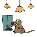fat sand rat under lights