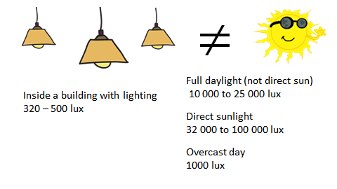 sunlight versus electric light