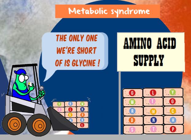 glycine supply in metabolic syndrome