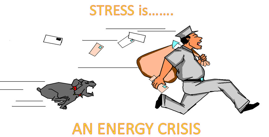 stress as an energy crisis