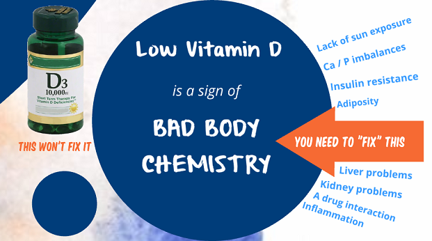 low vitamin D a sign not a cause of bad body chemistry