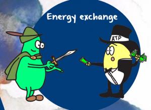 creatine kinase taking energy from ATP