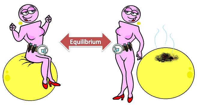 POPs in equilibrium in the body