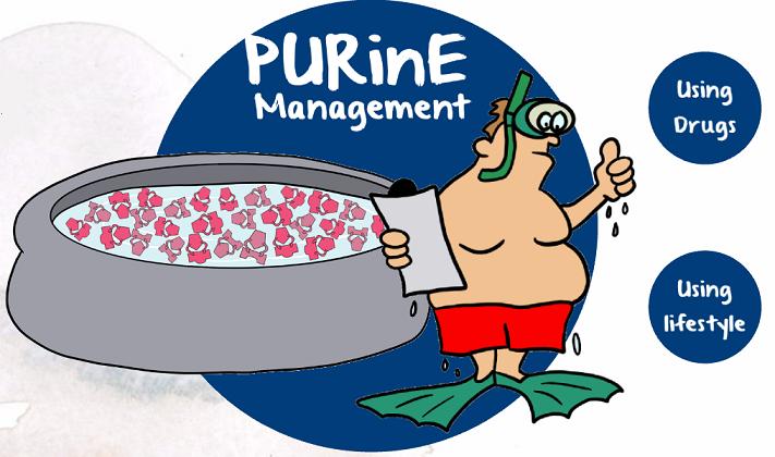purine management
