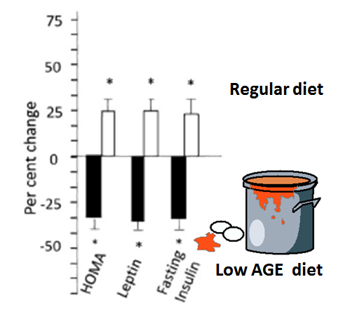 insulin resistance levels on a low AGE diet