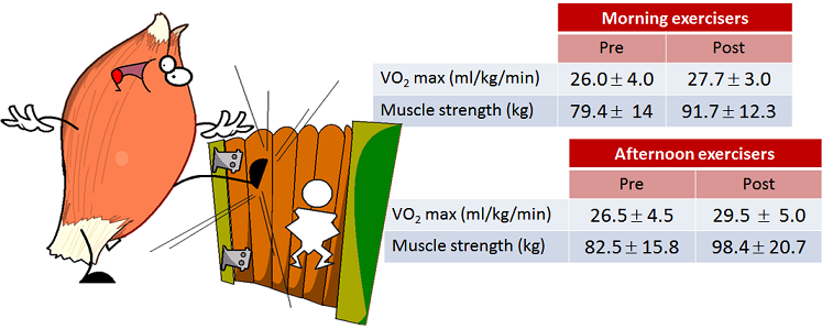 muscle strenght and fitness data