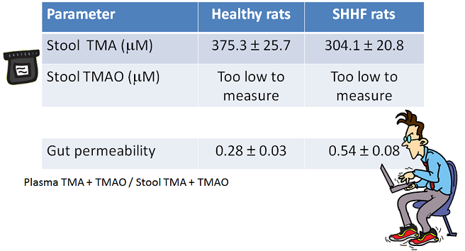 TMA levels in poop of SHHF rats